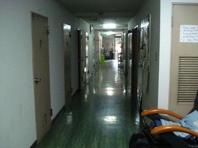 Hotel New Koyo (por dentro)