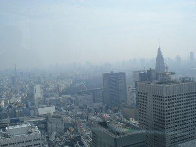 La contaminada pero bella ciudad de Tokio